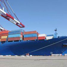Egipto: aumentan las exportaciones argentinas