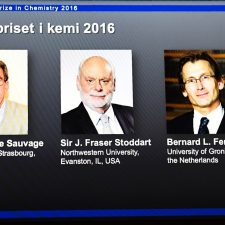 Nobel de Química compartido