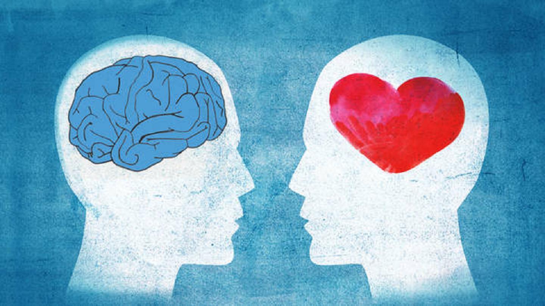 ¿Elegimos con el cerebro o con el corazón Google ayuda a revelar cómo se decide